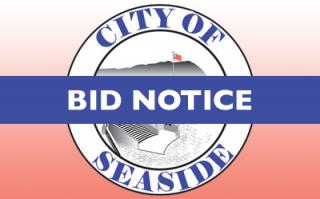 Maintenance for Generators City of Seaside Facilities